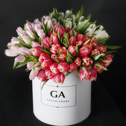 Тюльпаны в коробке Sofia