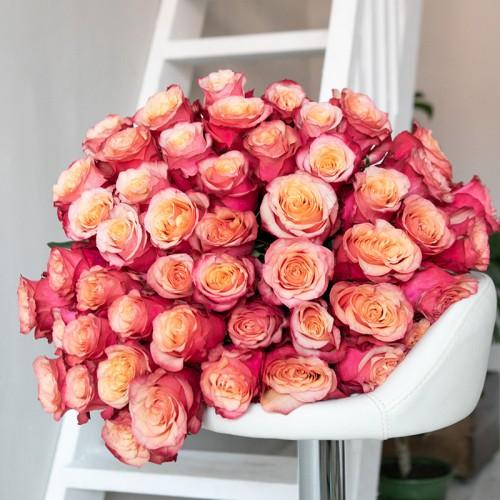 Розы CHARLOTTE