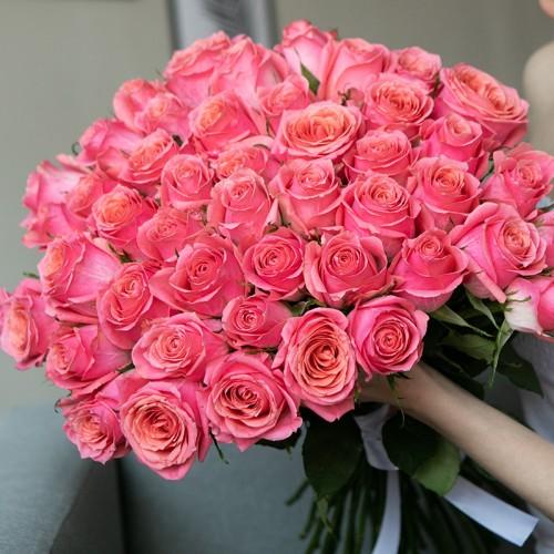 Розы ICE PINK