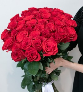 Розы FREEDOM