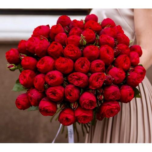 Розы RED PIANO